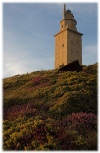 [Tower of Hercules]