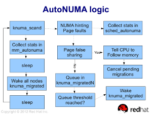 [AutoNUMA workflow]