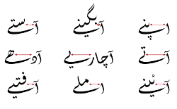 [Several common Urdu words containing baṛi ye]