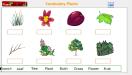 [Karma Plants Chart]