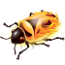 [Firebug logo]